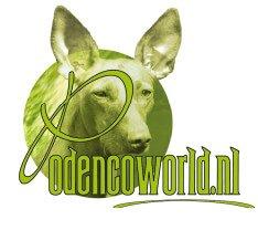 Podencoworld